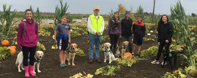 guide dogs for the blind san rafael ca